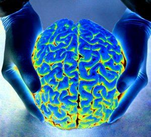 Brain changes